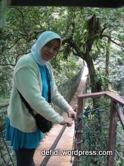 jembatan ayun